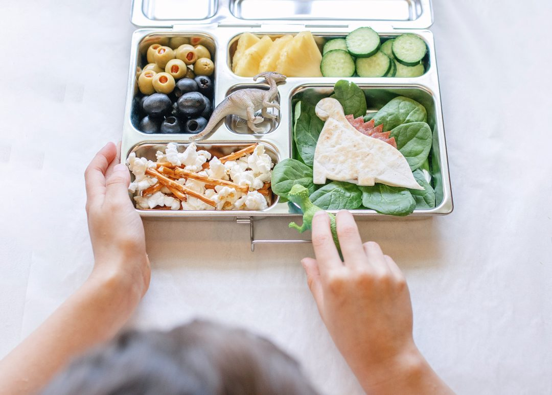 mommy bloger influencer bento lunch dinosaur bento lunch back to school lunch ideas lunches for kids