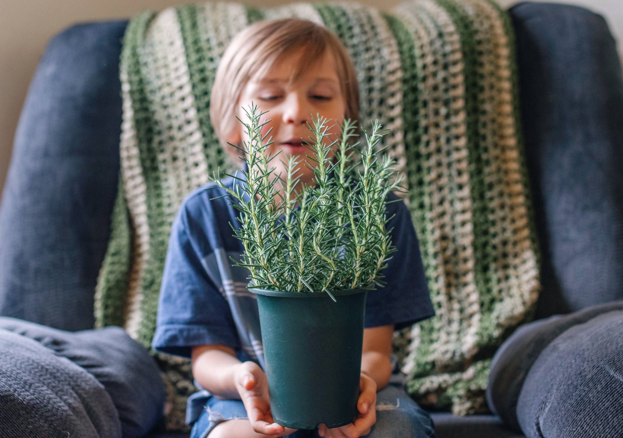 small child holding a plant that he found for his indoor scavenger hunt